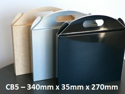 CB5 - Carry Bag - 340mm x 35mm x 270mm