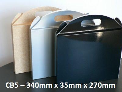 CB5 - Carry Bag - 340mm x 35mm x 270mm