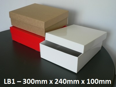 LB1 Large Box with Lid - 300mm x 240mm x 100mm