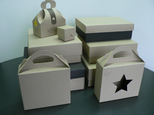 Earthpak 100 Recycled Gift Boxes Craftpak Promotional Gift
